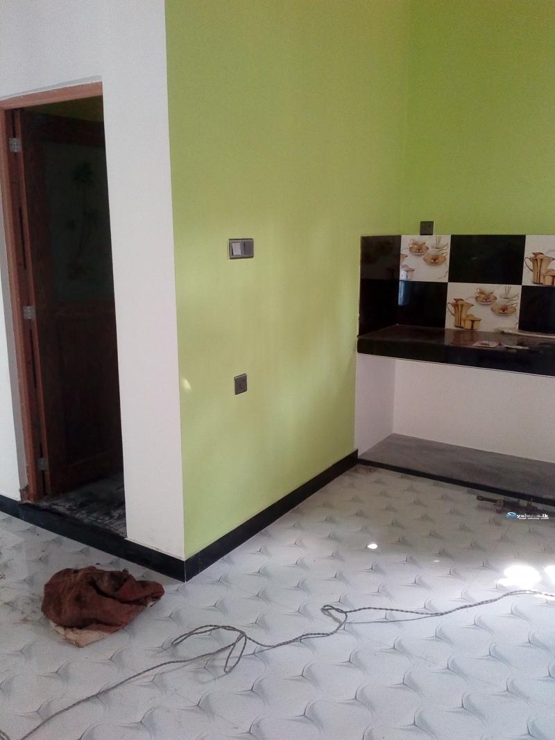 House Painting & Wood Polish