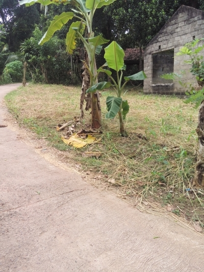 House with Land for Sale in Mirigama
