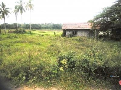 Land for Sale in Weerakatiya