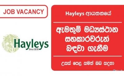 Call Centre Associate – Hayleys Group