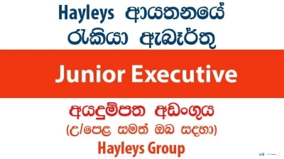 Junior Executive – Finance – Hayleys Group