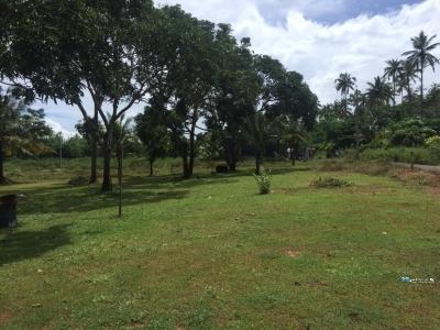 Land for Sale in Matara Kekanadura