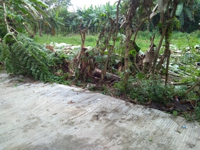 Land for Sale in Beruwala
