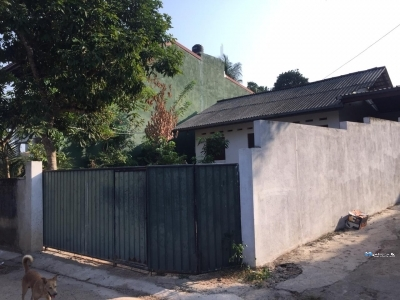 House for Rent in Kottawa Town
