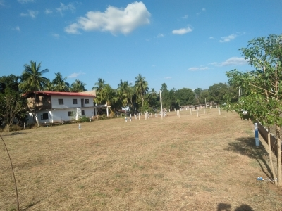Land for Sale in Dambulla City