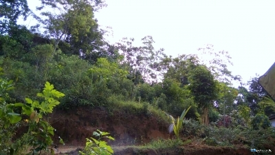 Land for Sale in Dodampe(Ratnapura)
