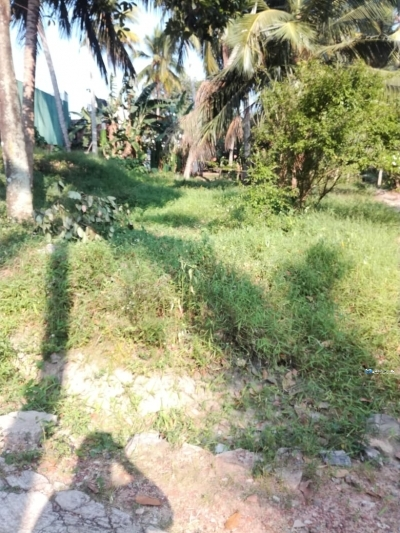 Land for sale in Kottawa Town