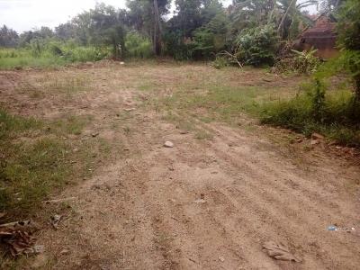 Land for Sale in Waikkala(Thoppuwa Junction)