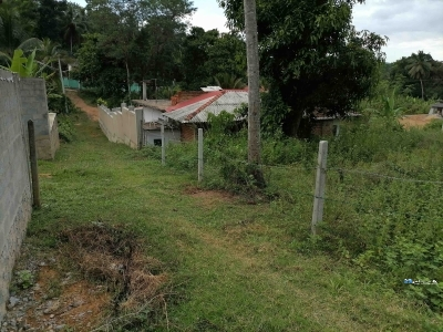 Land for Sale in Walasmulla