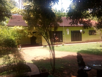 House with Land for Sale in Eppawala