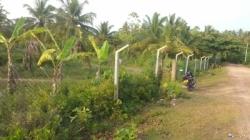 Land for Sale in Goviyapana