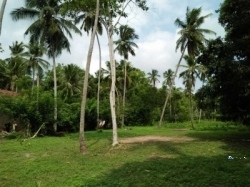 Land for Sale in Bingiriya