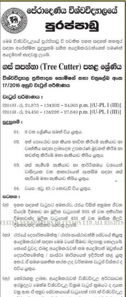 Tree Cutter - University of Peradeniya Government Jobs