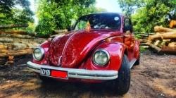 Volkswagen Beetle 1300 CC - 1979