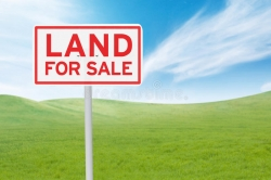 Land for Sale in Giriulla