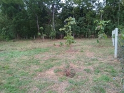 Land for Sale - Anuradhapura