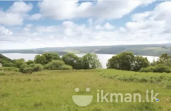 Land for Sale in Pannala