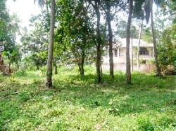 Commercial Land for Sale at Anuradhapura