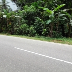 Land for Sale in Matugama