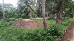 Land for Sale in Weeraketiya(Ranna)