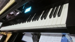 Roland Piano Keyboard Juno DS 88