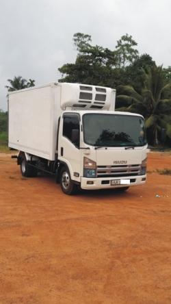 Isuzu Freezer Truck 2009