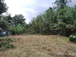 Land for Sale near Weediyagoda(Bandaragama)