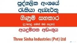 Accounts Assistant – Three Sinha Industries (Pvt) Ltd