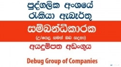 Coordinator – Debug Group of Companies