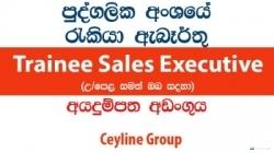 Trainee Sales Executive – Ceyline Group
