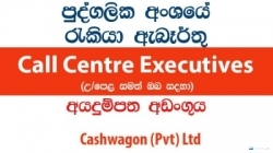 Call Centre Executives / Tele Collections Executives – Cashwagon (Pvt) Ltd