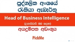 Head of Business Intelligence – PickMe