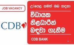 EXECUTIVE – BRANCH OPERATIONS – CDB Bank