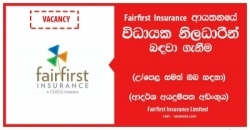 Executive – Non Motor Claims – Fairfirst Insurance Limited