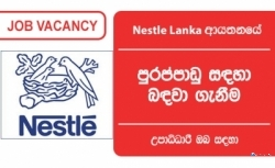 ELECTRICAL ENGINEERING SENIOR PROFESSIONAL – Nestle Lanka