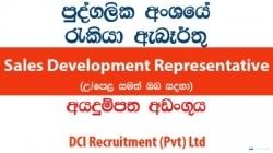 Sales Development Representative – DCI Recruitment (Pvt) Ltd
