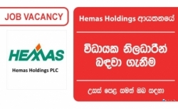 EXECUTIVE – IT HELP DESK AND ADMIN – Hemas Holdings PLC