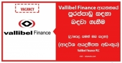 Product Manager / Assistant Product Manager – Vallibel Finance PLC