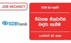 Executive Officer – Finance – SDB Bank