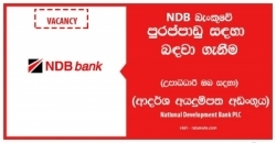 Relationship Manager – Project Finance – National Development Bank PLC