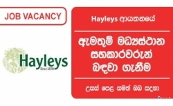 Call Centre Associate – Hayleys Group
