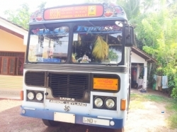Ashok Leyland Lenex Bus with Root Permit 2017