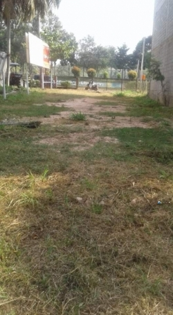 Commercial Land for Sale in Giriulla