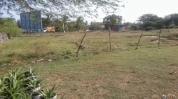 Land for Sale in Hambanthota
