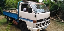 Isuzu 250 Lorry 1982