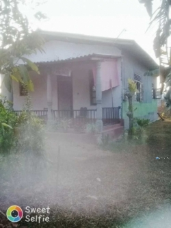 House for Sale in Divuldeniya(Giriulla)