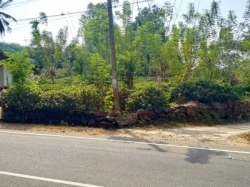 Tea State Land for Sale in Horana