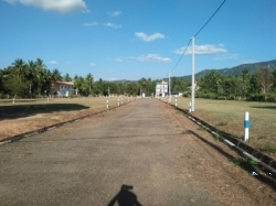 Land for Sale in Dambulla City