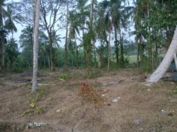 Land for Sale in Kesbewa