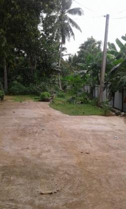 Land for Sale in Kurunegala Pothuhera